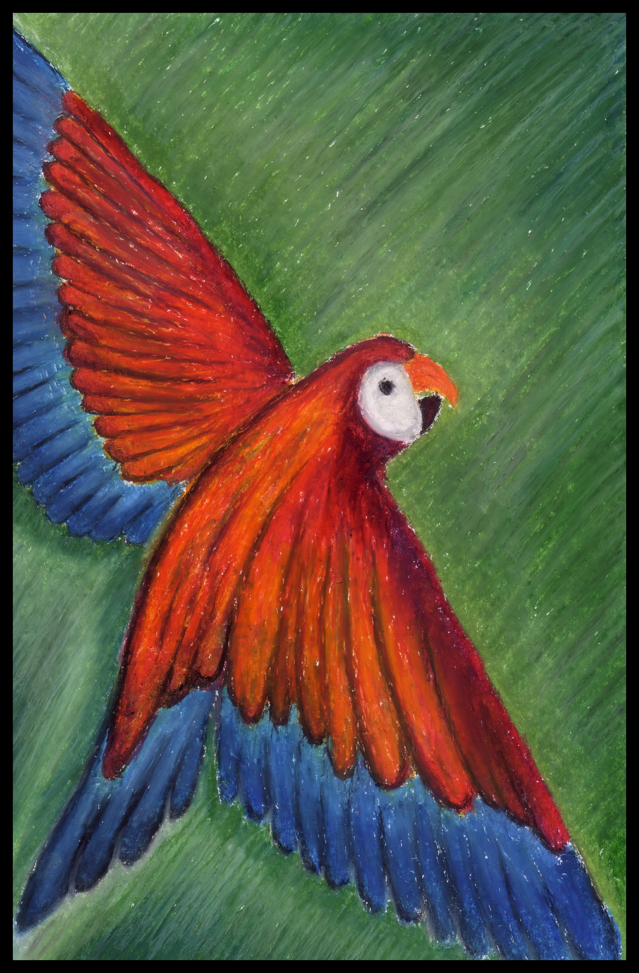 Oil Pastels And Soft Pastels Joned Art Space